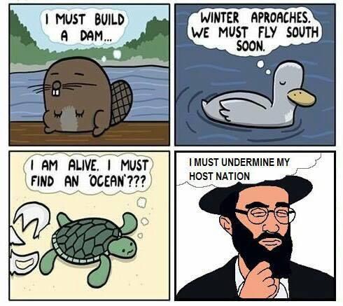 Jewish nature