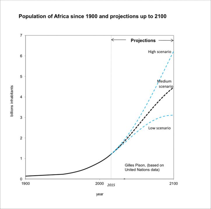 Afrika befolkningsvekst